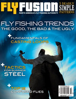 fly.fusion.sp13-cover